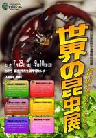 世界の昆虫展